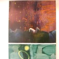 Exposition de Pascale Blaizot et Eric Perrin: les oeuvres